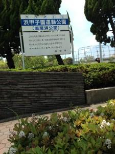 浜甲子園運動公園公共駐車場(写真)